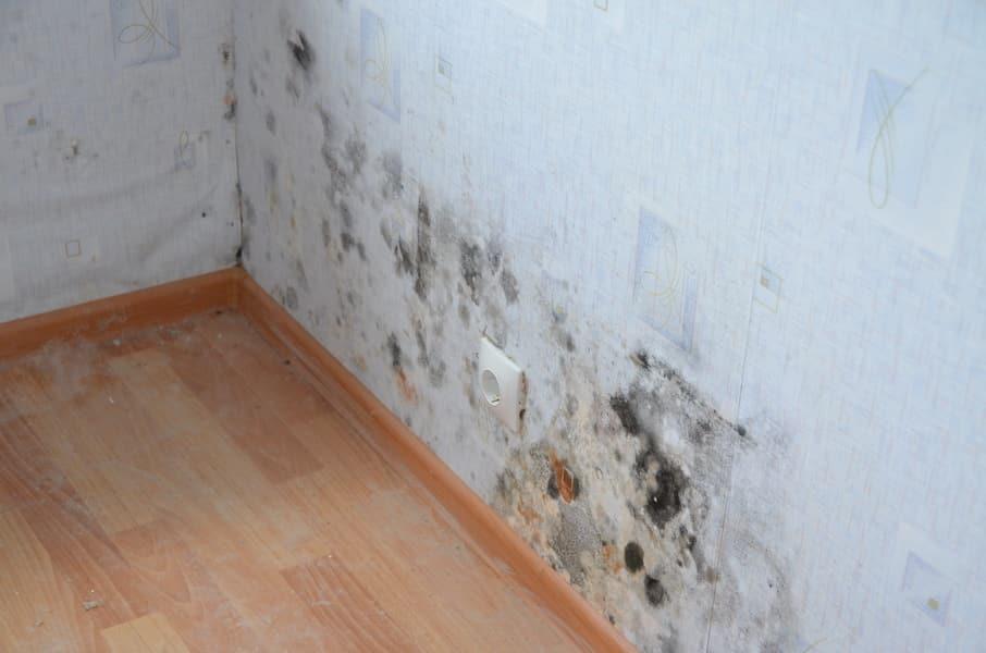Заделка швов потолка из гипсокартона цена