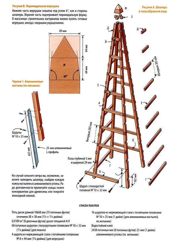 Схема-чертеж пирамидальной шпалеры   Как сделать шпалеру своими руками