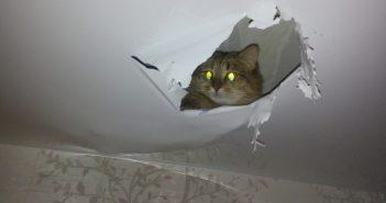 Как заделать дырку в натяжном потолке