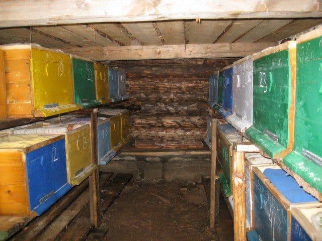 Подземный омшаник для пчёл