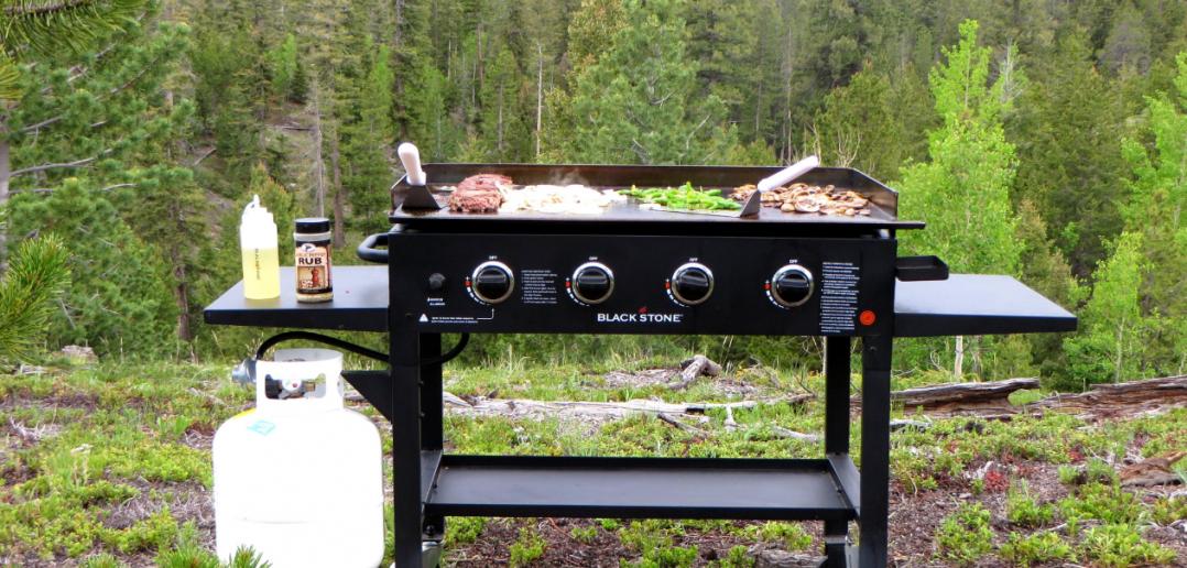 Как выбрать барбекю | Портативные и передвижные барбекю