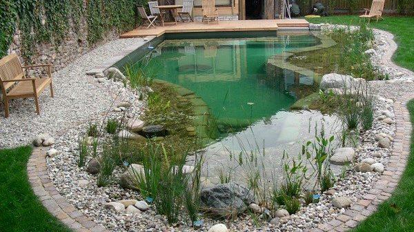 Бассейн своими руками | Бетонные бассейны