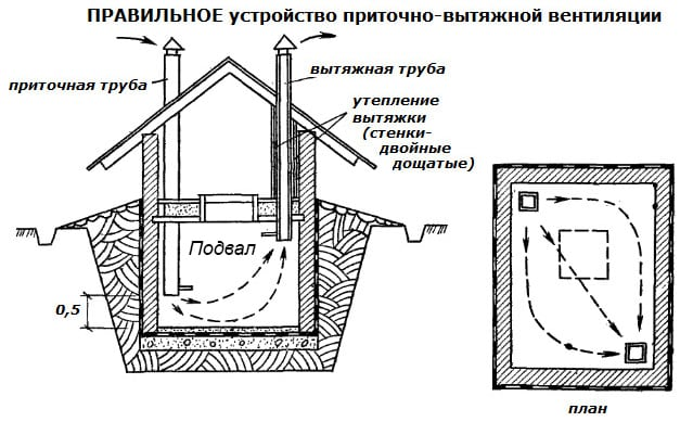 Как обустроить подвал | Кладовая в подвале