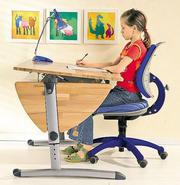 Выбираем письменный стол для школьника | Организация рабочего места школьника