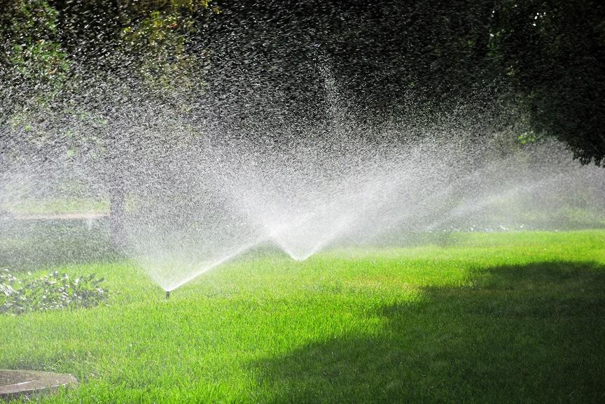 Вода из бассейна для полива растений — вредно ли? | Можно ли поливать водой из бассейна огород, газон, цветы