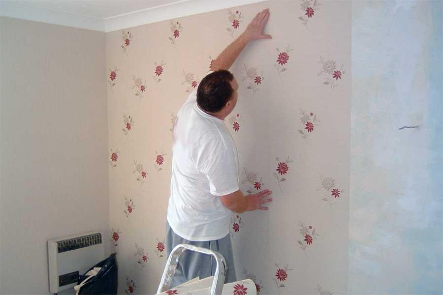 Подготовка стен под обои | Обои или покраска стен: что лучше, что дешевле