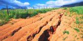 Как можно защитить почву от выдувания ветром: способы борьбы с эрозией почвы